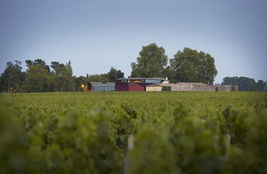 Château La Dominique Vineyards