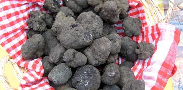 Languedoc Truffles